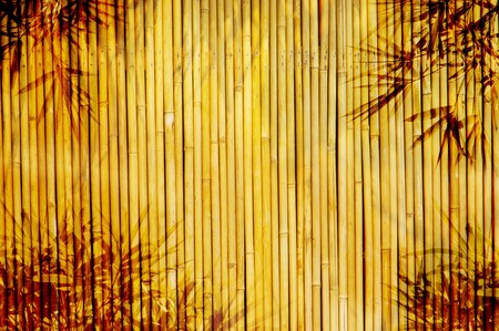 Light Golden bamboo Background great for any project. photo