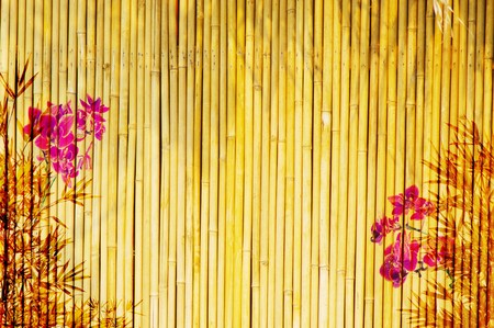 Fresh orchids with bamboo background  photo