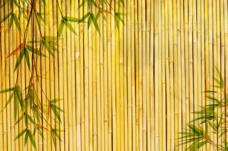 bamboo background: Light Golden bamboo Background great for any project.  Stock Photo