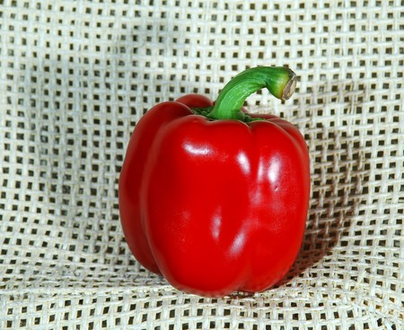 bell pepper: Closeup of bell pepper Stock Photo