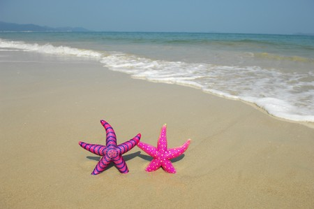 two colorful starfish sitting on beach Stock Photo - 8222968