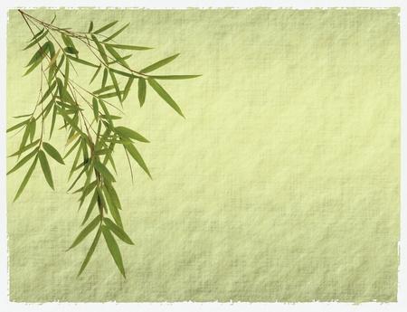 japones bambu: bamb� antiguo textura de papel antiguo grunge  Foto de archivo