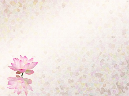 digital paint: lotus with set of abstract painted background