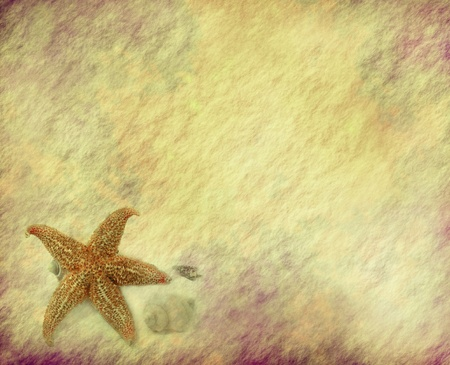 starfish with old grunge antique paper texture photo
