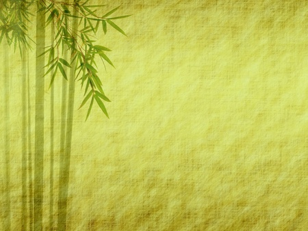 japan calligraphy: Silhouette of branches of a bamboo on paper background