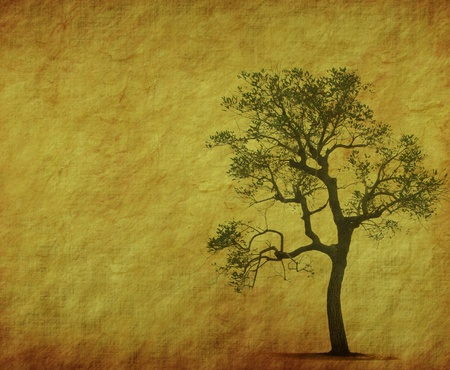 tree with old grunge antique paper texture photo