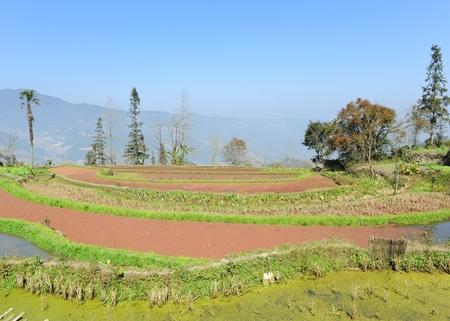 rice terraces of yuanyang in yunnan, china Stock Photo - 8944278