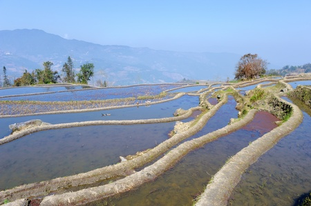 Hani rice terraces of yuanyang, yunnan, china photo