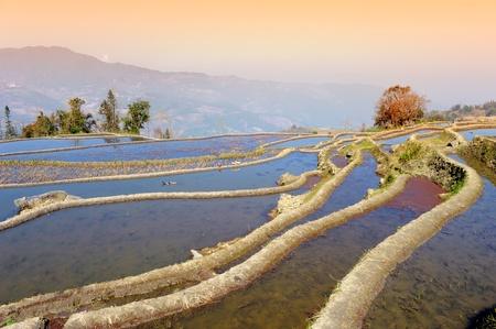 Hani rice terraces of yuanyang, yunnan, china photo