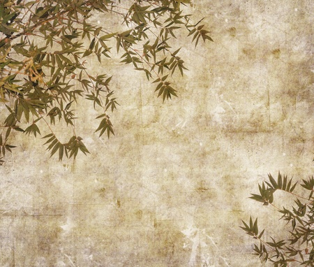 Silhouette of branches of a bamboo on paper background   photo
