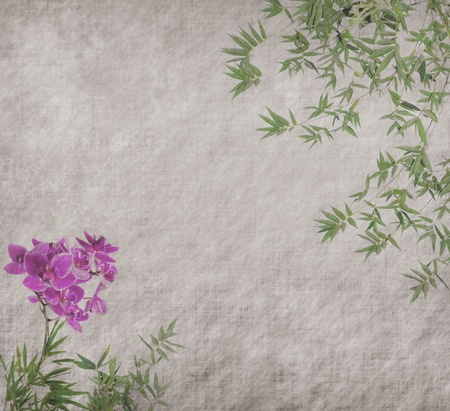 orchids with bamboo leaves on old grunge antique paper texture photo