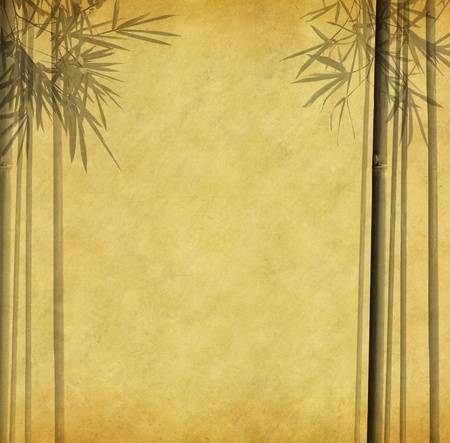 Silhouette of branches of a bamboo on paper background Stock Photo - 9143667