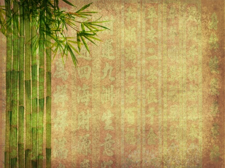 Silhouette of branches of a bamboo on paper background Stock Photo - 9190441