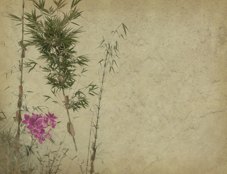 Grungy Background.old paper with orchids and bamboo leaves on old grunge antique paper texture photo