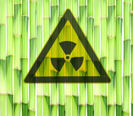 nuclear meltdown disaster Stock Photo - 9369677