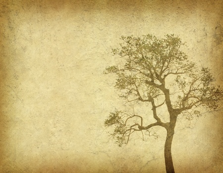 tree with old grunge antique paper texture Stock Photo - 9369715