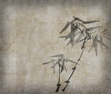 Silhouette of branches of a bamboo on paper background Stock Photo - 9471454