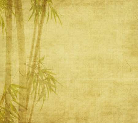 Silhouette of branches of a bamboo on paper background Stock Photo - 9471458