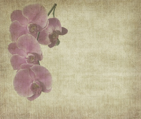 Old antique vintage paper background Stock Photo - 9471451