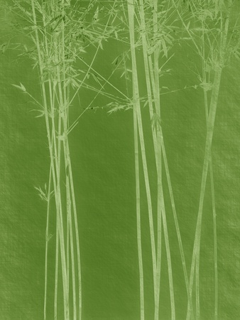 bamboo on old grunge antique paper texture Stock Photo - 9617281