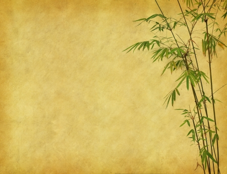 design of chinese bamboo trees with texture of handmade paper Stock Photo - 9617313