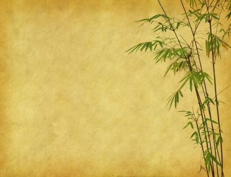 bambu: dise�o de �rboles de bamb� chino con textura de papel hecho a mano