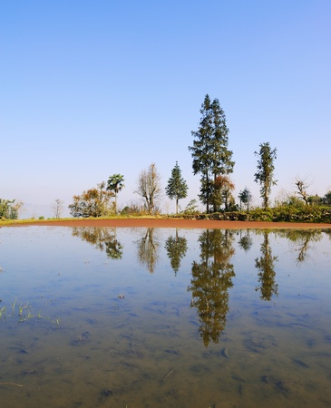 rice terraces of yuanyang in yunnan, china  Stock Photo - 9810457