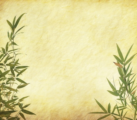 Grunge Stained Bamboo Paper Background  photo