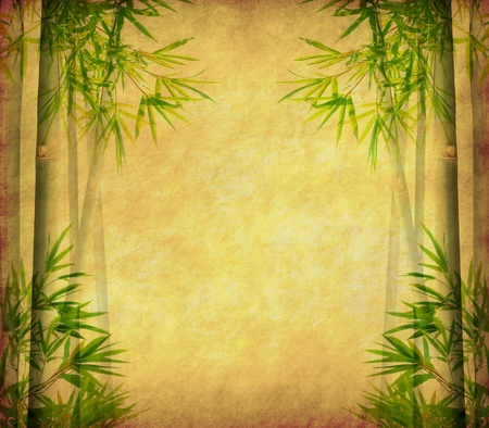 japones bambu: bamb� antiguo textura de papel antiguo grunge
