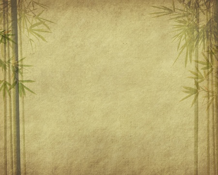 bamboo on old grunge antique paper texture   photo