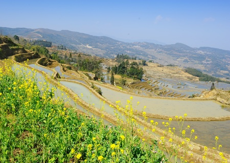 rice terraces of yuanyang in yunnan, china  Stock Photo - 10048638
