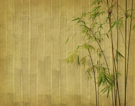 bamboo on old grunge antique paper texture Stock Photo - 10009810