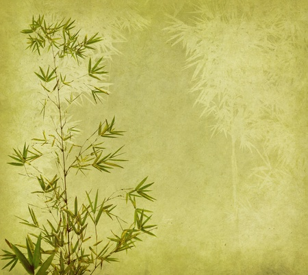japanese background: bamboo on old grunge antique paper texture