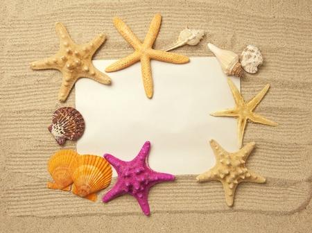 sandy: estrella de mar y proyectiles con marco en la playa, recuerdos de vacaciones