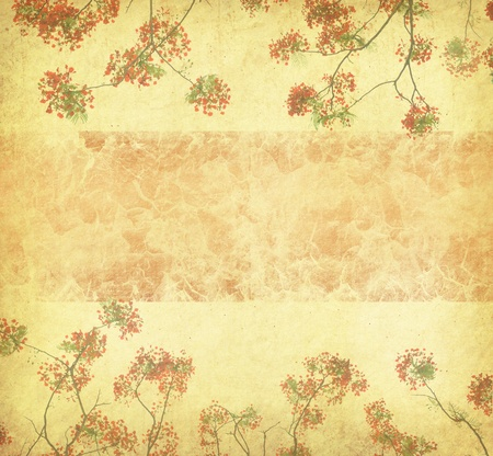 Peacock flowers on tree with Old antique vintage paper background   photo