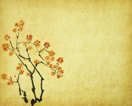 peach tree: Spring peach blossom on Old antique vintage paper background