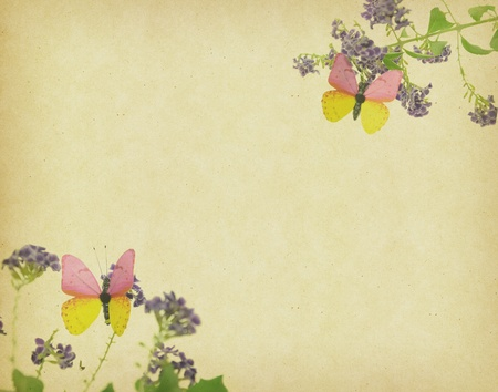 butterfly and flower on Grunge background  photo