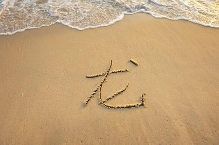dragon on tropical beach sand photo