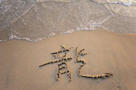 word mean dragon on tropical beach sand photo