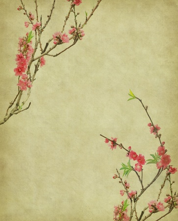 scrapbook cover: Antiguo fondo antiguo papel de �poca