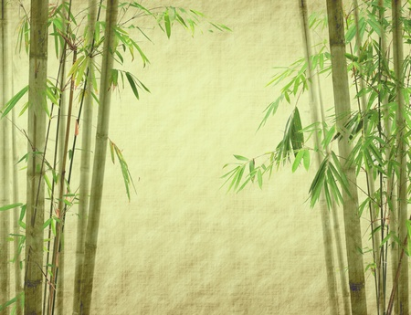 bamboo leaf: bamboo on old grunge antique paper texture Stock Photo