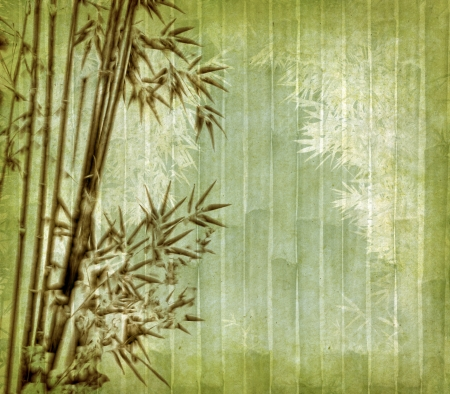 old paper with bamboo branches photo