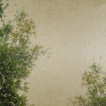 fengshui:          bamboo on old antique paper texture                       Stock Photo