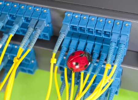 ethernet cable: pests with optic fiber cables connected to an optic switch