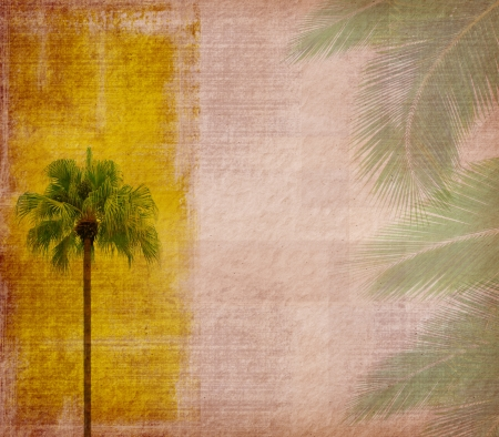 old paper background with palm leaf photo