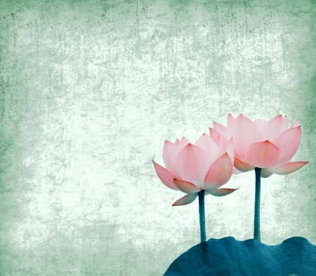 lotiform: lotus with set of abstract painted background