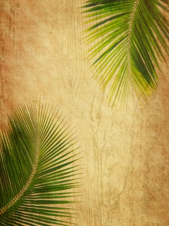 grunge tree: palm with set of abstract painted background
