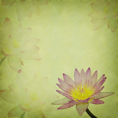 lotus on Old antique vintage paper background photo