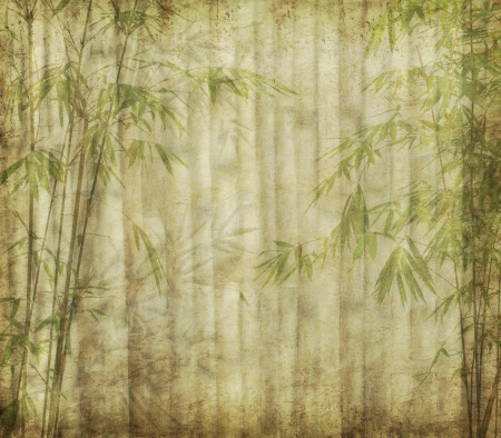 lucky bamboo: Old paper texture with bamboo  Stock Photo