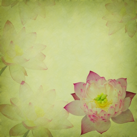 Water Lily on grunge textured background photo